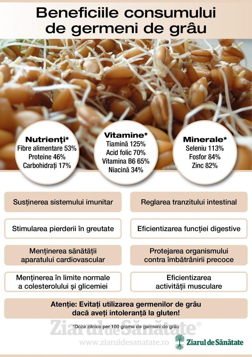 Infografie germeni de grau